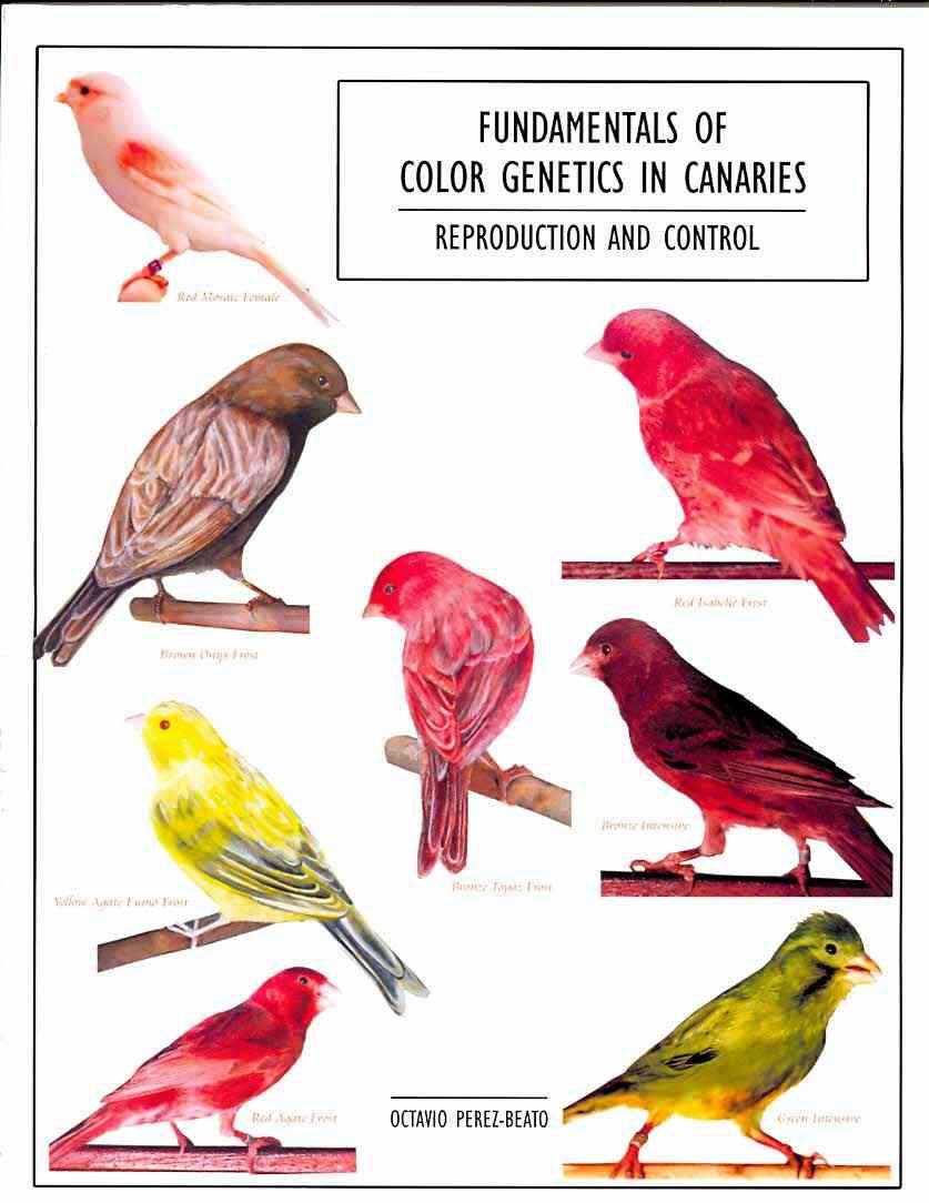 Fundamentals of Color Genetics in Canaries By Perez-beato, Octavio